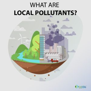 What are local pollutants